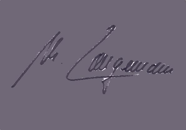 Unterschrift- Markus Langemann